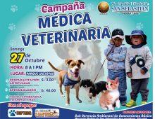 CAMPAÑA MEDICA VETERINARIA